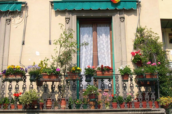 Spring in Sant'Ambrogio (600Wx400H) - Spring time in a nice terrace overlooking the Sant'Ambrogio market (Photo by Marco De La Pierre)