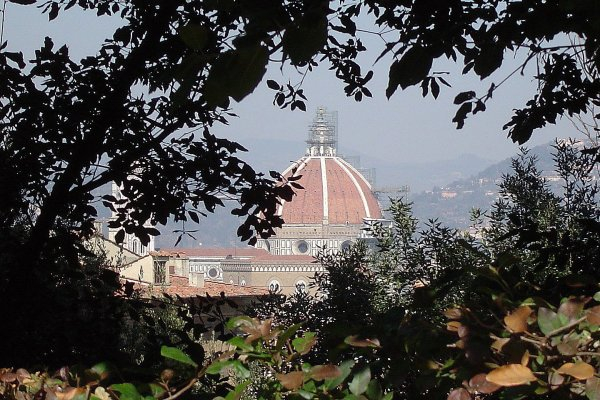 Through the trees (600Wx400H) - The Duomo...looking through the trees. (Jacqueline Ahn, from New York currently studying at Polimoda in Florence)