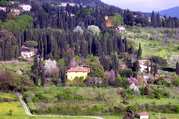 Download Fiesole Hill (600Wx400H)