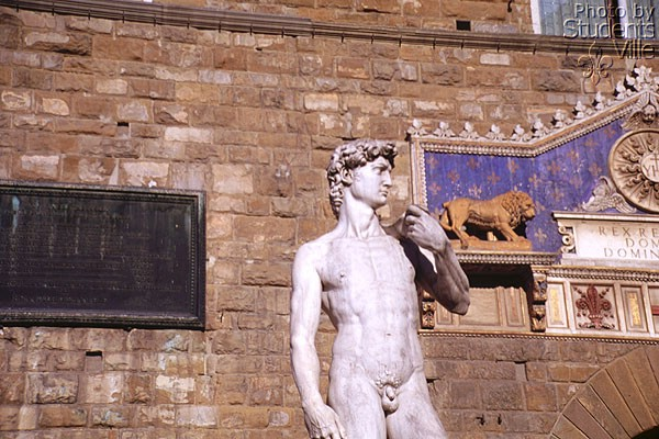 David (600Wx400H) - The copy of the David [Michelangelo - 1501] in front of Palazzo della Signoria.(Photo by Paolo Ramponi)