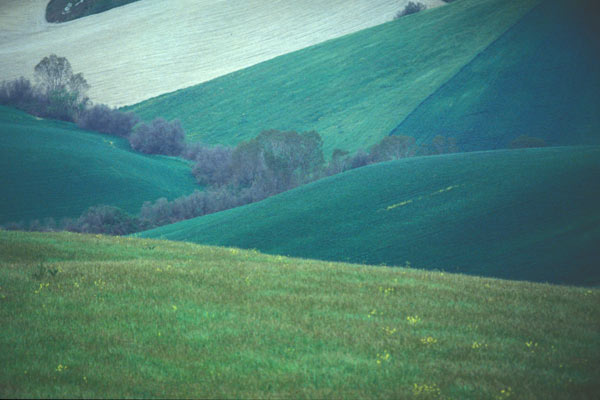 Download Tuscan Hills (600Wx400H)